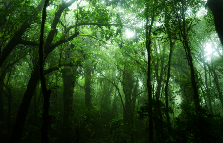 Photo illustration Costa Rica